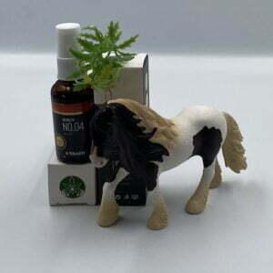Wetality NO.04 spray til heste